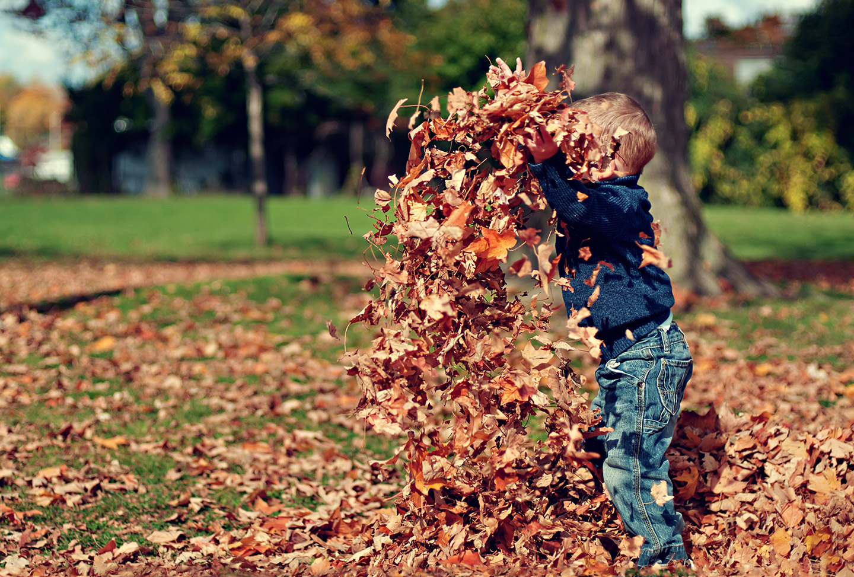 terapia infantil desobediencia